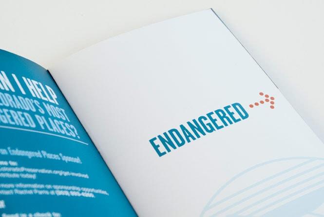 cps-brochure-3